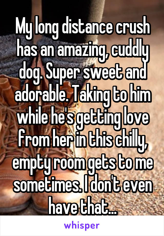 My long distance crush has an amazing, cuddly dog. Super sweet and adorable. Taking to him while he's getting love from her in this chilly, empty room gets to me sometimes. I don't even have that...