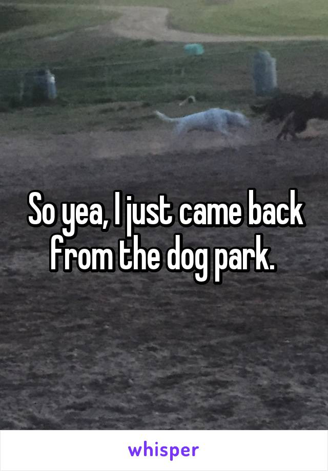 So yea, I just came back from the dog park.