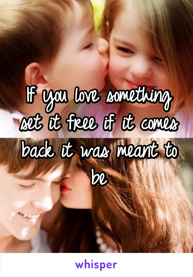 If you love something set it free if it comes back it was meant to be