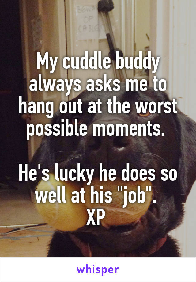 """My cuddle buddy always asks me to hang out at the worst possible moments.   He's lucky he does so well at his """"job"""".  XP"""