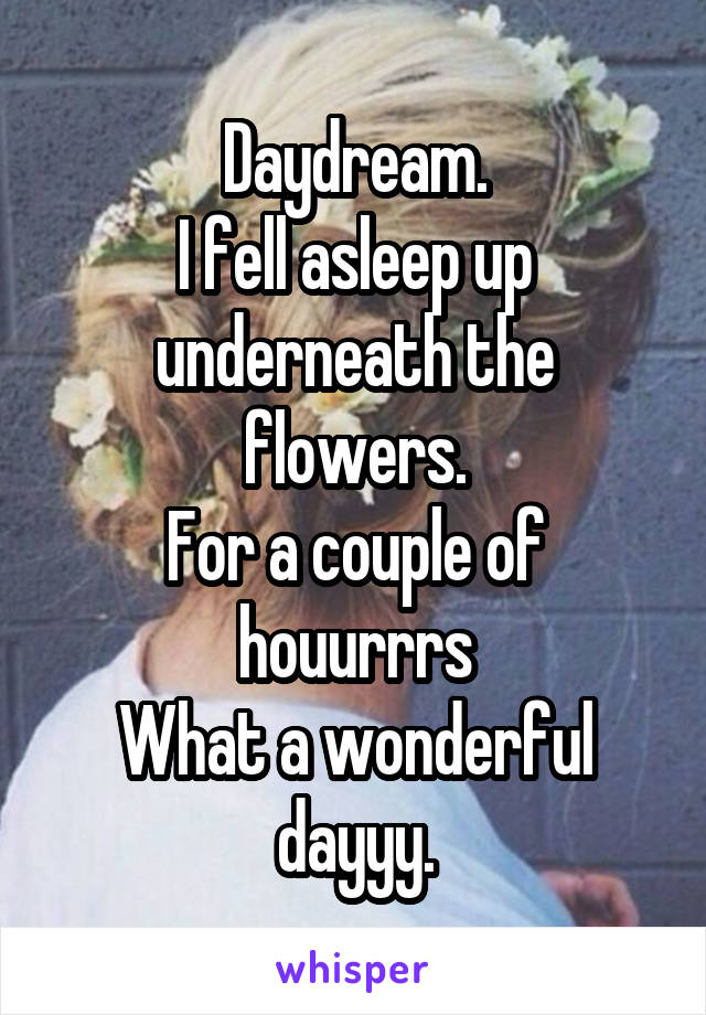 Daydream. I fell asleep up underneath the flowers. For a couple of houurrrs What a wonderful dayyy.