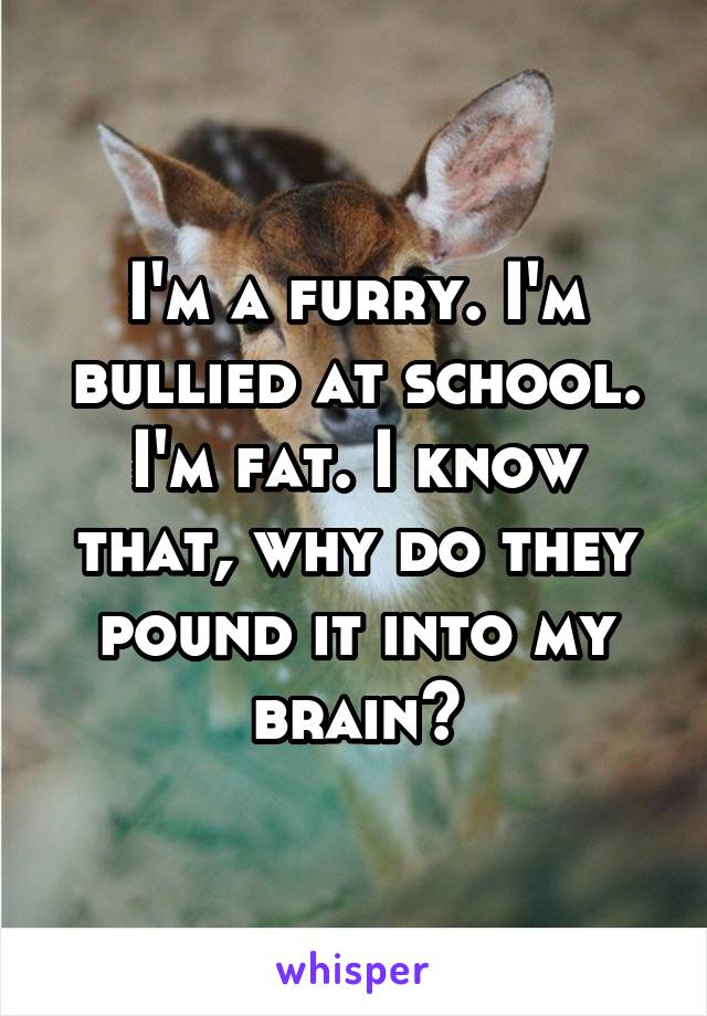 I'm a furry. I'm bullied at school. I'm fat. I know that, why do they pound it into my brain?