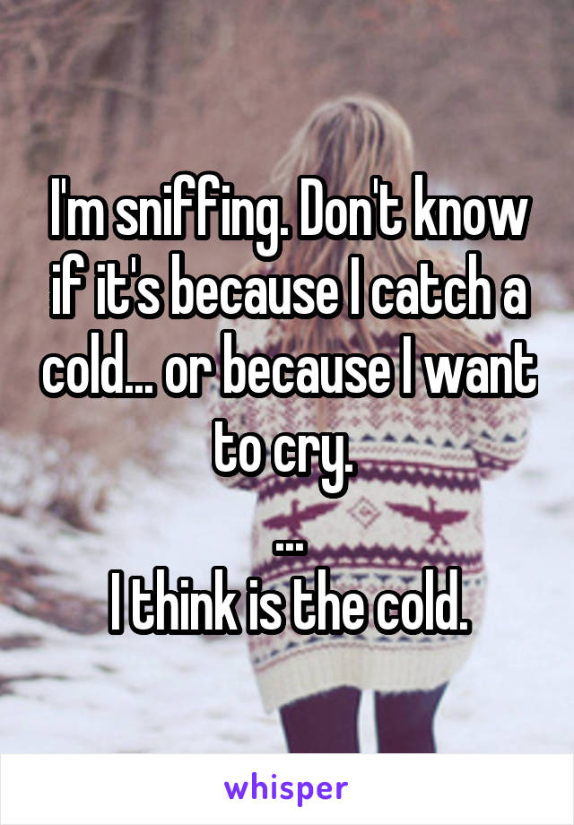 I'm sniffing. Don't know if it's because I catch a cold... or because I want to cry.  ... I think is the cold.