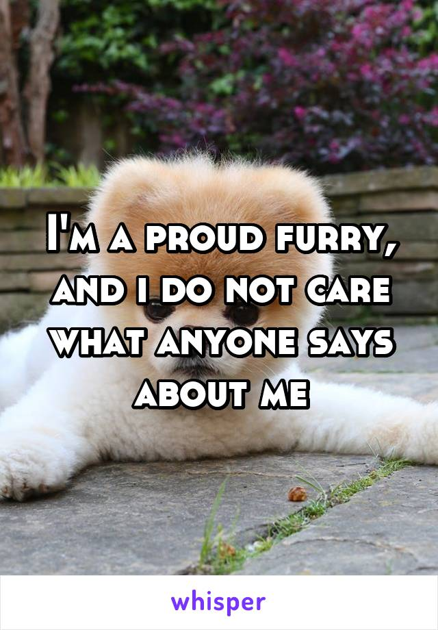 I'm a proud furry, and i do not care what anyone says about me