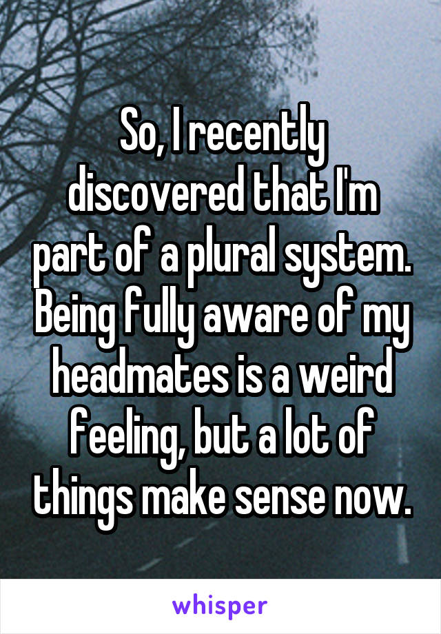 So, I recently discovered that I'm part of a plural system. Being fully aware of my headmates is a weird feeling, but a lot of things make sense now.