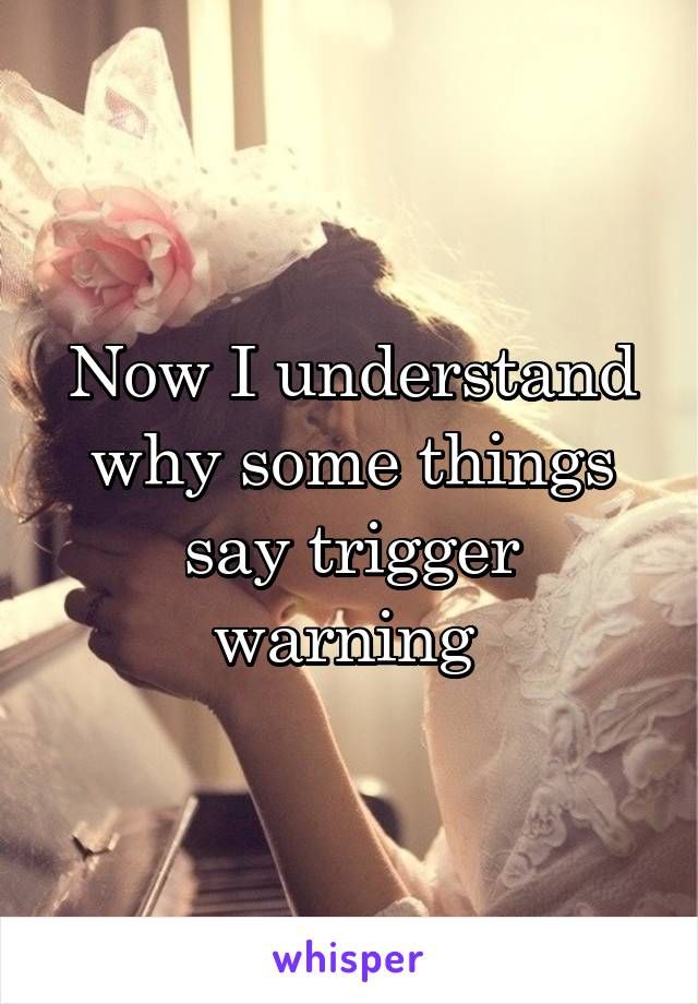 Now I understand why some things say trigger warning