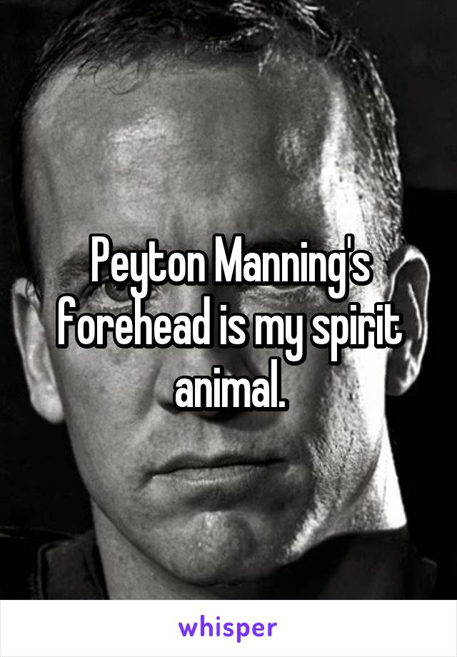Peyton Manning's forehead is my spirit animal.