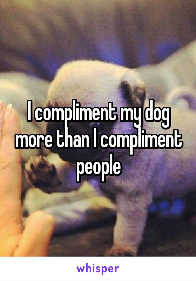 I compliment my dog more than I compliment people