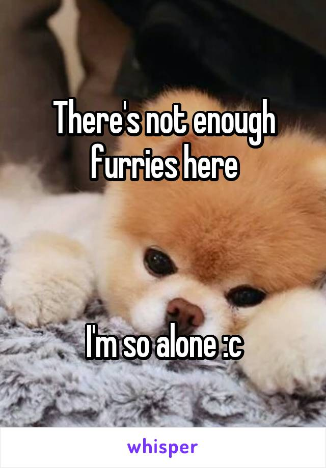 There's not enough furries here    I'm so alone :c