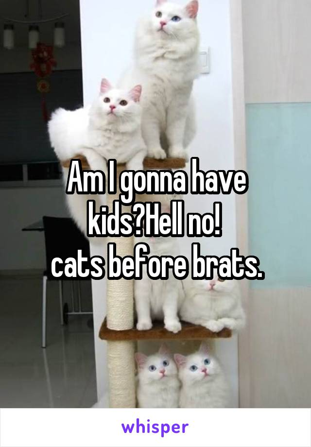 Am I gonna have kids?Hell no!  cats before brats.