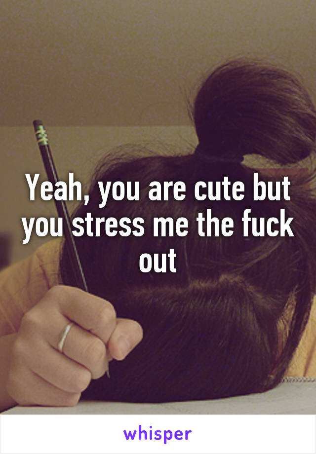 Yeah, you are cute but you stress me the fuck out