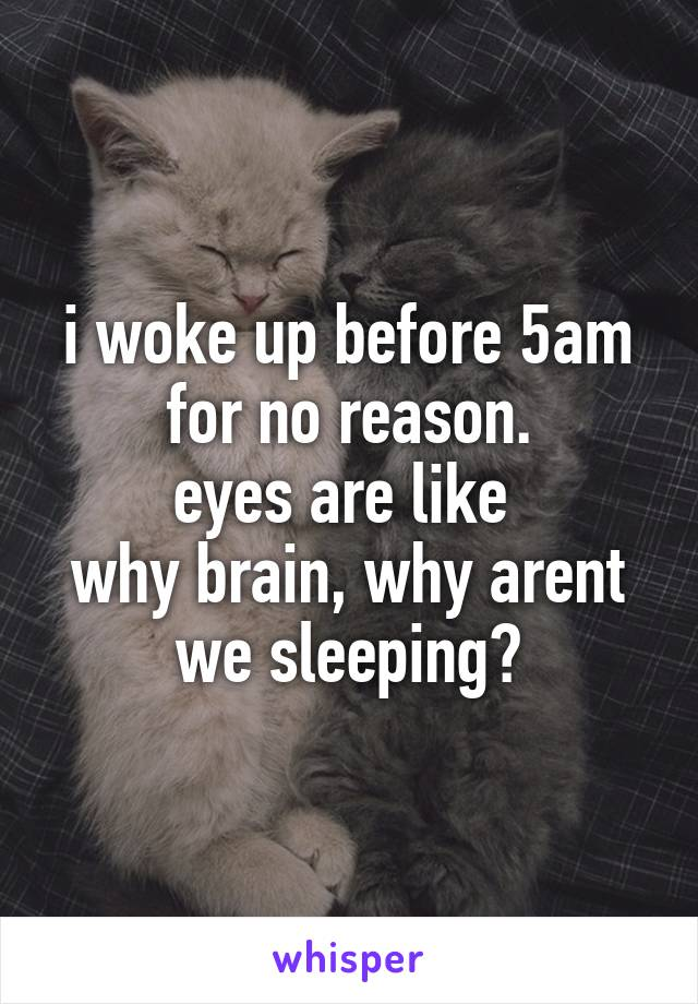 i woke up before 5am for no reason. eyes are like  why brain, why arent we sleeping?