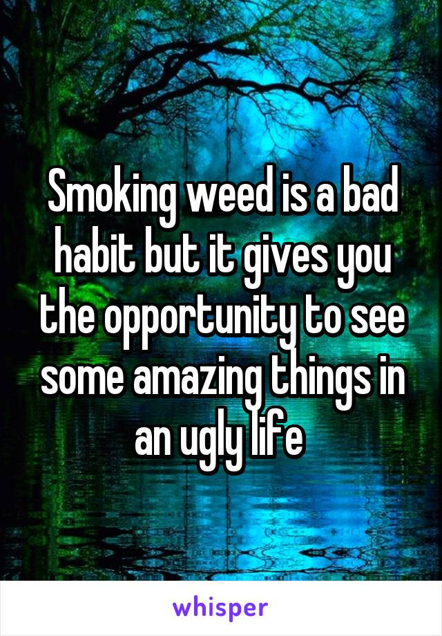 Smoking weed is a bad habit but it gives you the opportunity to see some amazing things in an ugly life