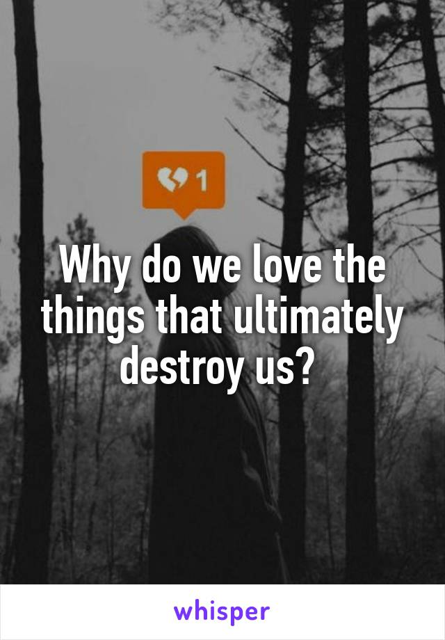 Why do we love the things that ultimately destroy us?