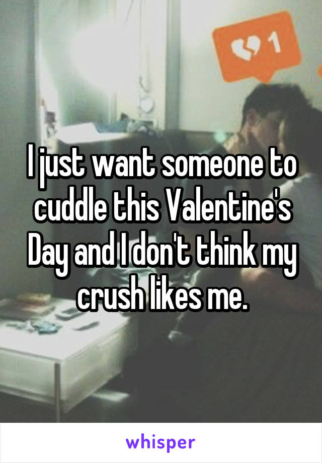 I just want someone to cuddle this Valentine's Day and I don't think my crush likes me.
