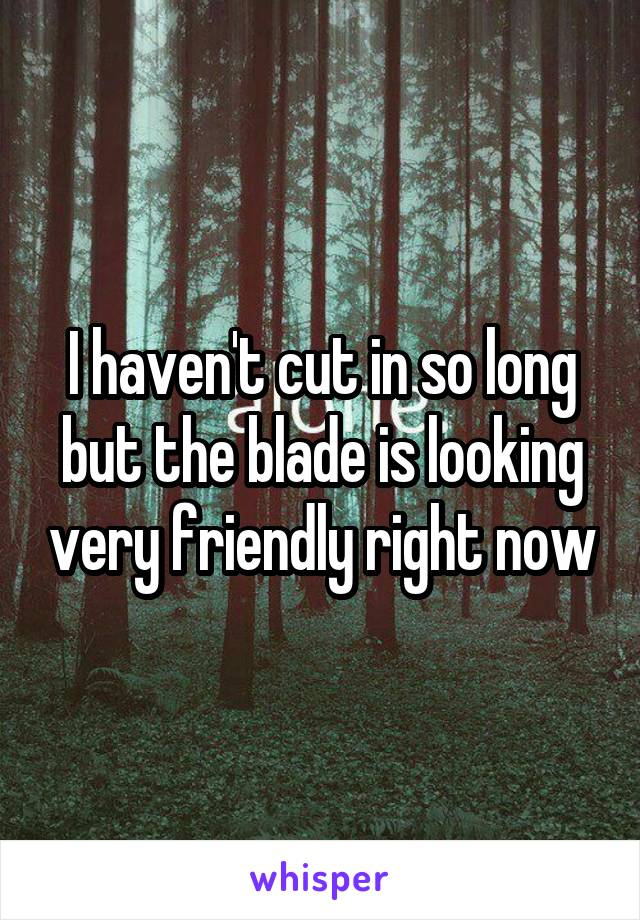 I haven't cut in so long but the blade is looking very friendly right now