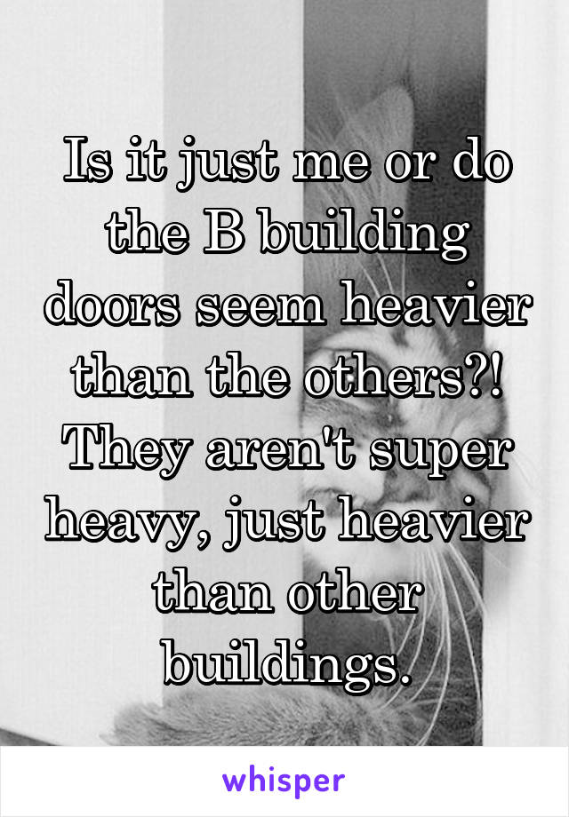 Is it just me or do the B building doors seem heavier than the others?! They aren't super heavy, just heavier than other buildings.