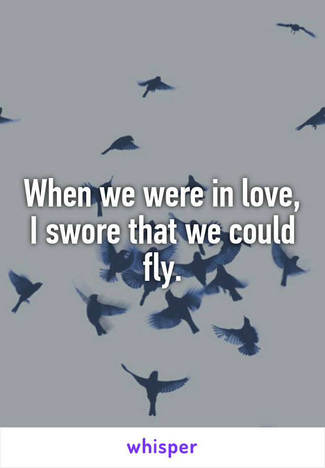 When we were in love, I swore that we could fly.