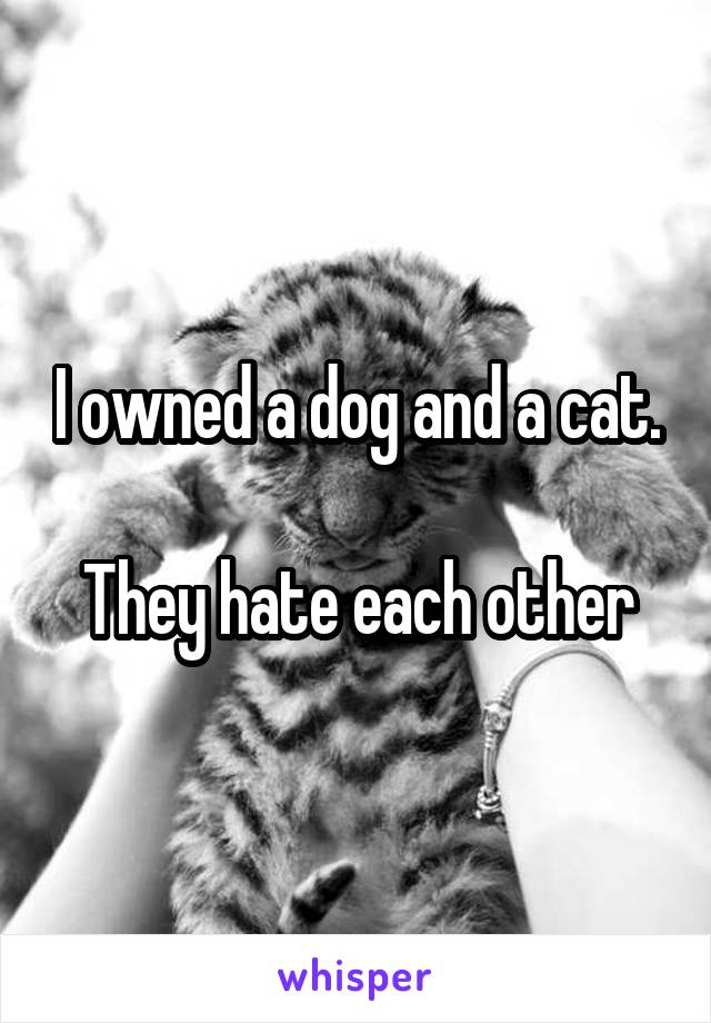 I owned a dog and a cat.  They hate each other
