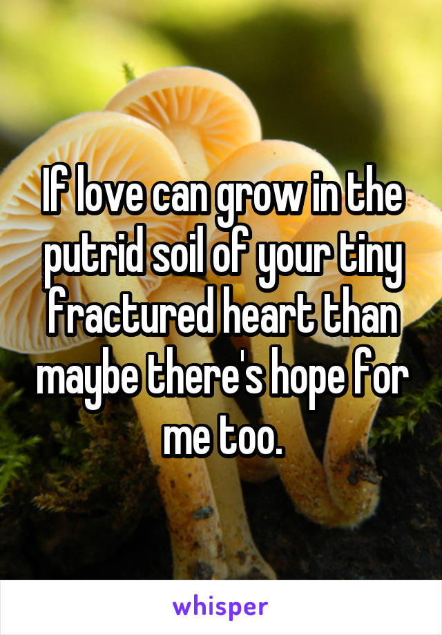 If love can grow in the putrid soil of your tiny fractured heart than maybe there's hope for me too.