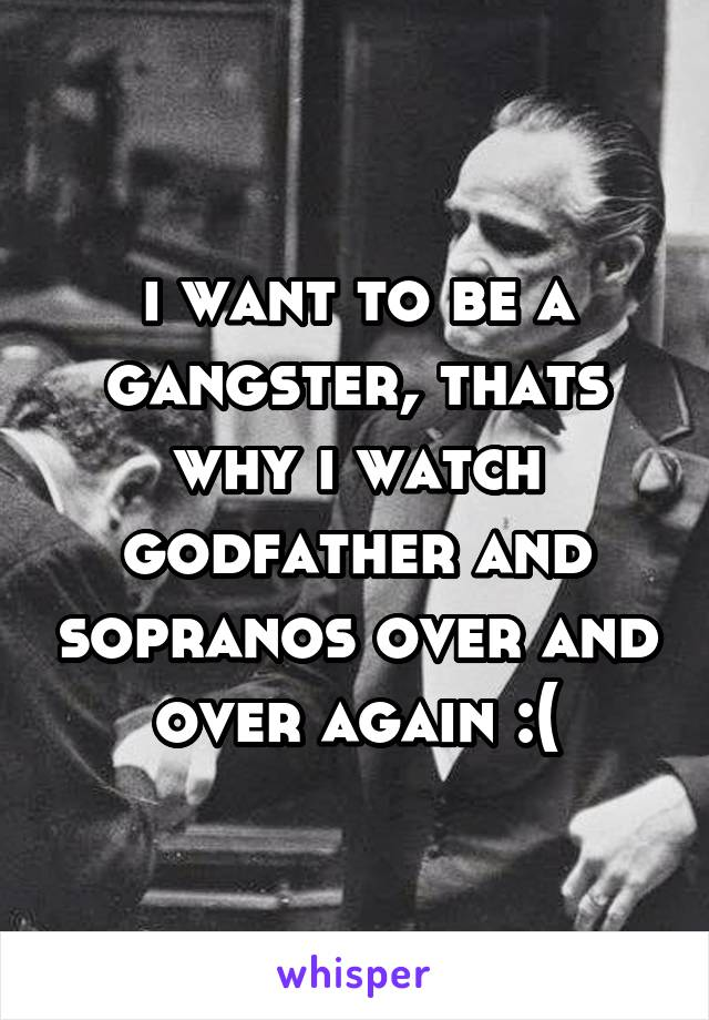 i want to be a gangster, thats why i watch godfather and sopranos over and over again :(