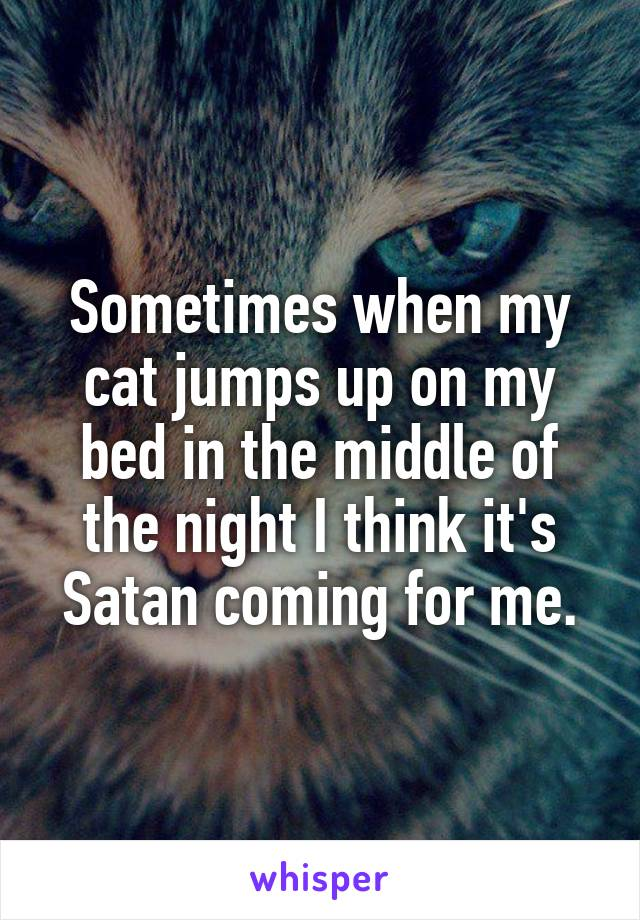 Sometimes when my cat jumps up on my bed in the middle of the night I think it's Satan coming for me.