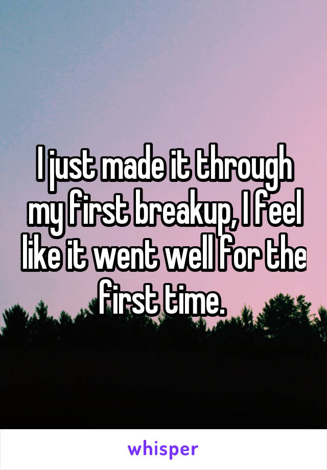 I just made it through my first breakup, I feel like it went well for the first time.