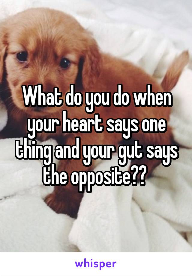 What do you do when your heart says one thing and your gut says the opposite??