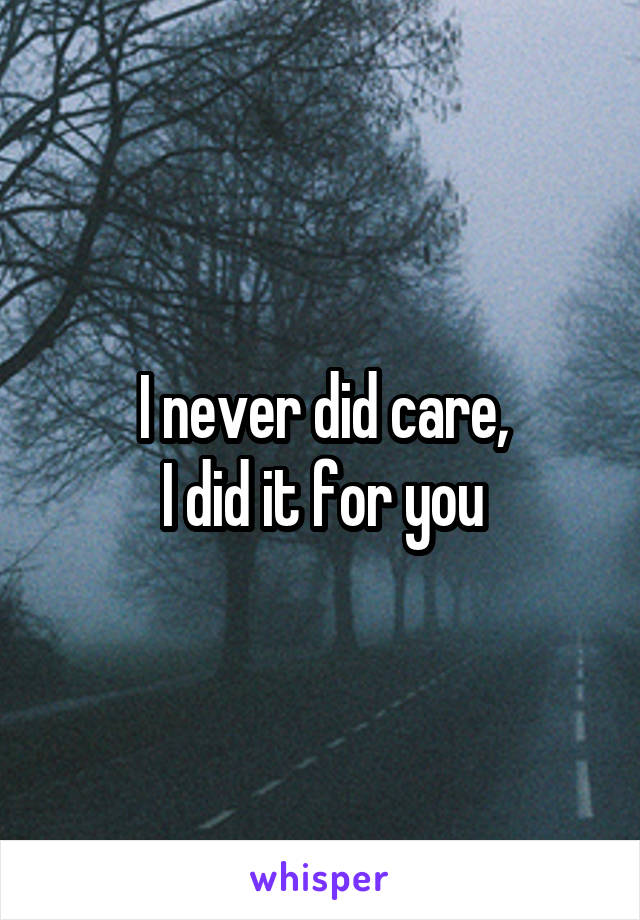 I never did care, I did it for you