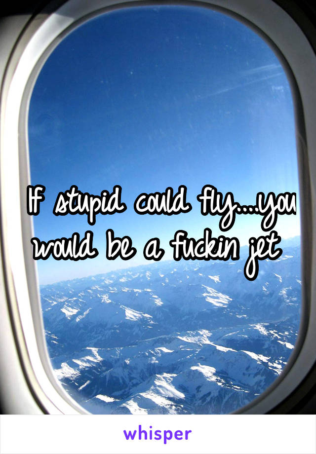 If stupid could fly....you would be a fuckin jet