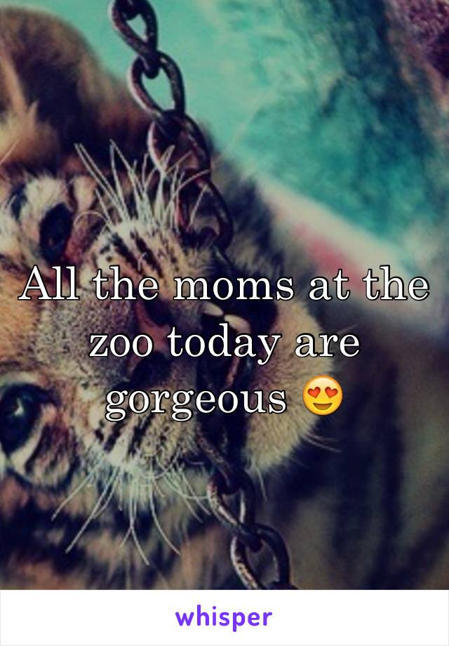 All the moms at the zoo today are gorgeous 😍