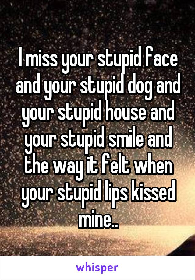 I miss your stupid face and your stupid dog and your stupid house and your stupid smile and the way it felt when your stupid lips kissed mine..