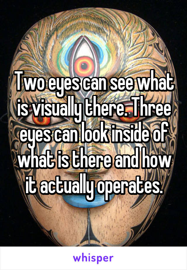Two eyes can see what is visually there. Three eyes can look inside of what is there and how it actually operates.