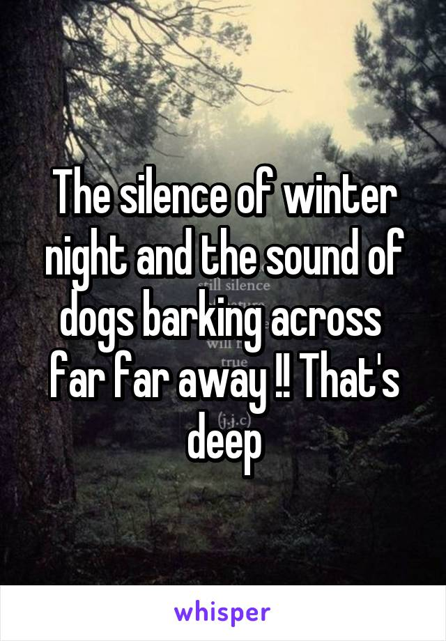 The silence of winter night and the sound of dogs barking across  far far away !! That's deep