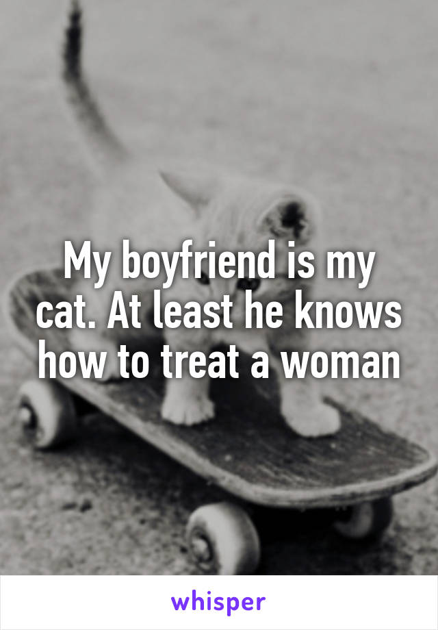 My boyfriend is my cat. At least he knows how to treat a woman