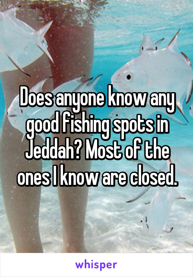 Does anyone know any good fishing spots in Jeddah? Most of the ones I know are closed.