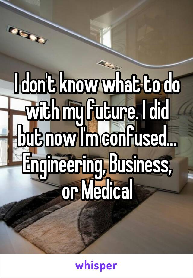 I don't know what to do with my future. I did but now I'm confused... Engineering, Business, or Medical