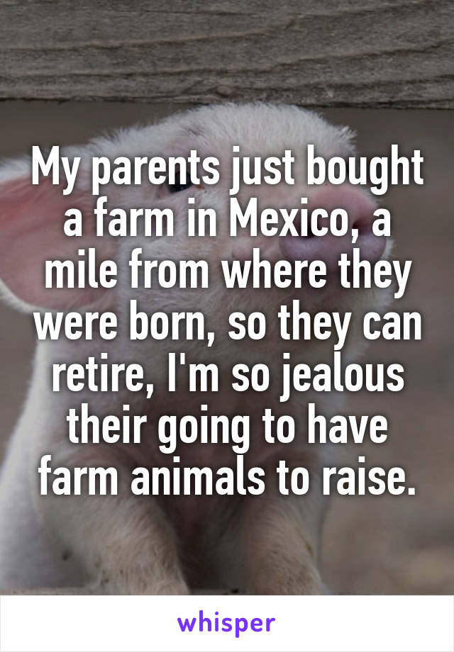 My parents just bought a farm in Mexico, a mile from where they were born, so they can retire, I'm so jealous their going to have farm animals to raise.
