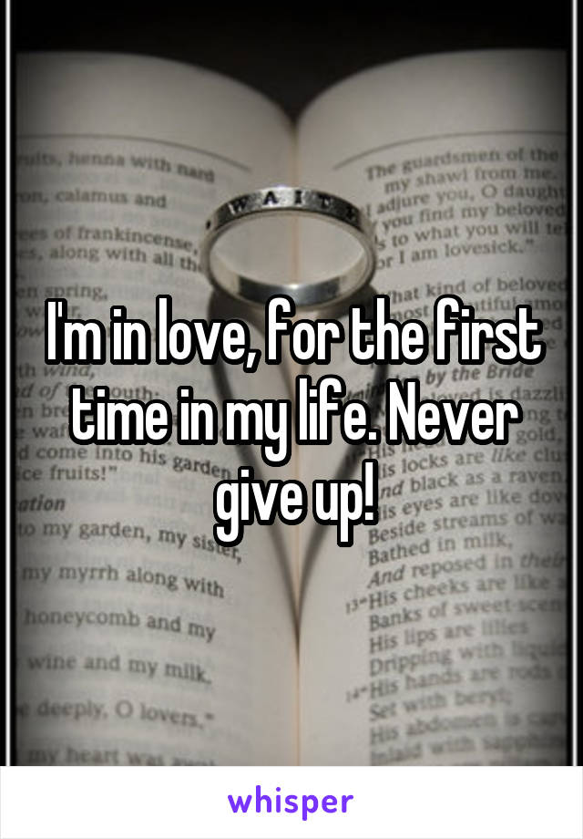 I'm in love, for the first time in my life. Never give up!