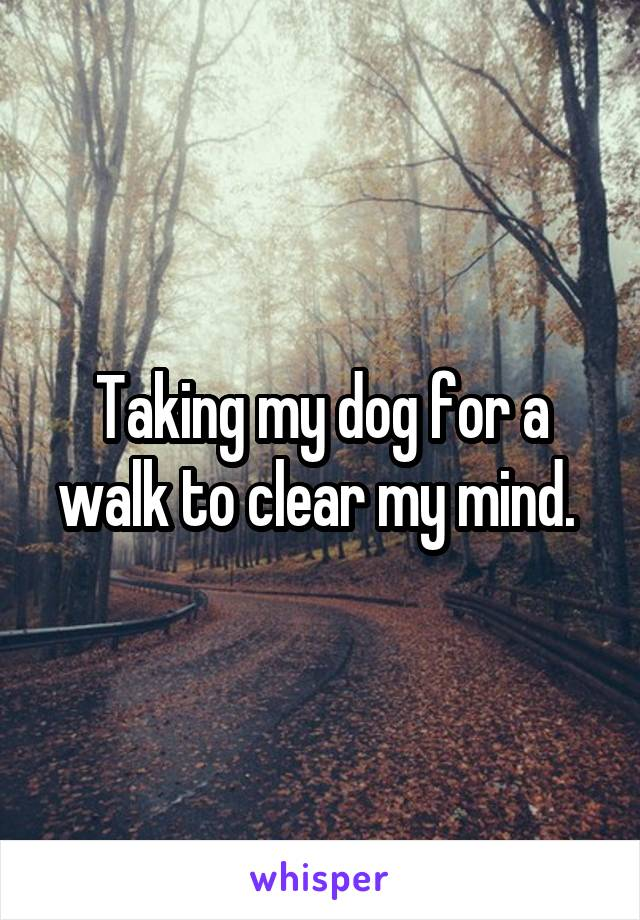 Taking my dog for a walk to clear my mind.