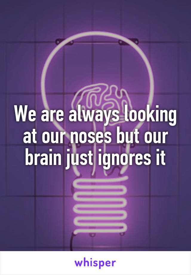 We are always looking at our noses but our brain just ignores it