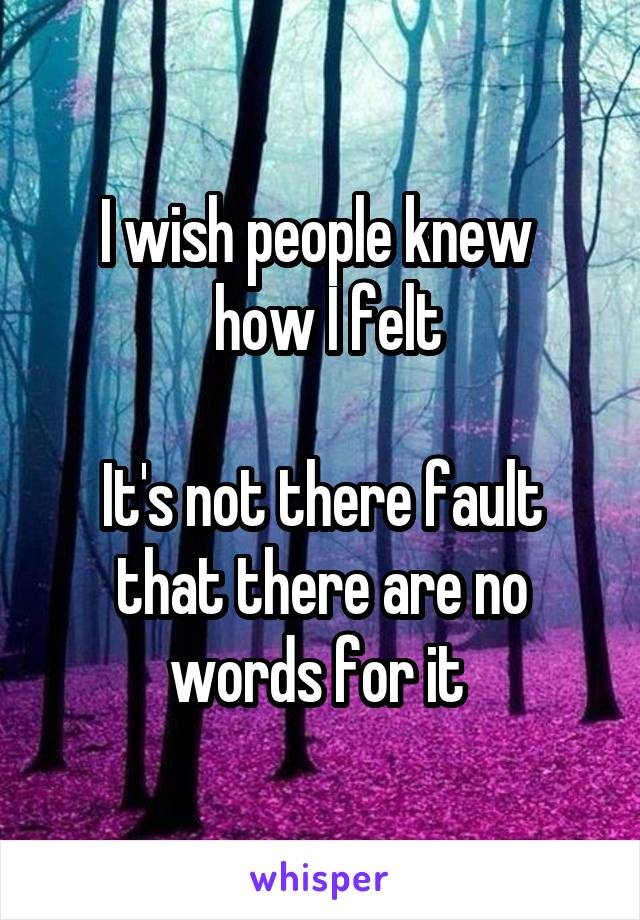 I wish people knew   how I felt  It's not there fault that there are no words for it