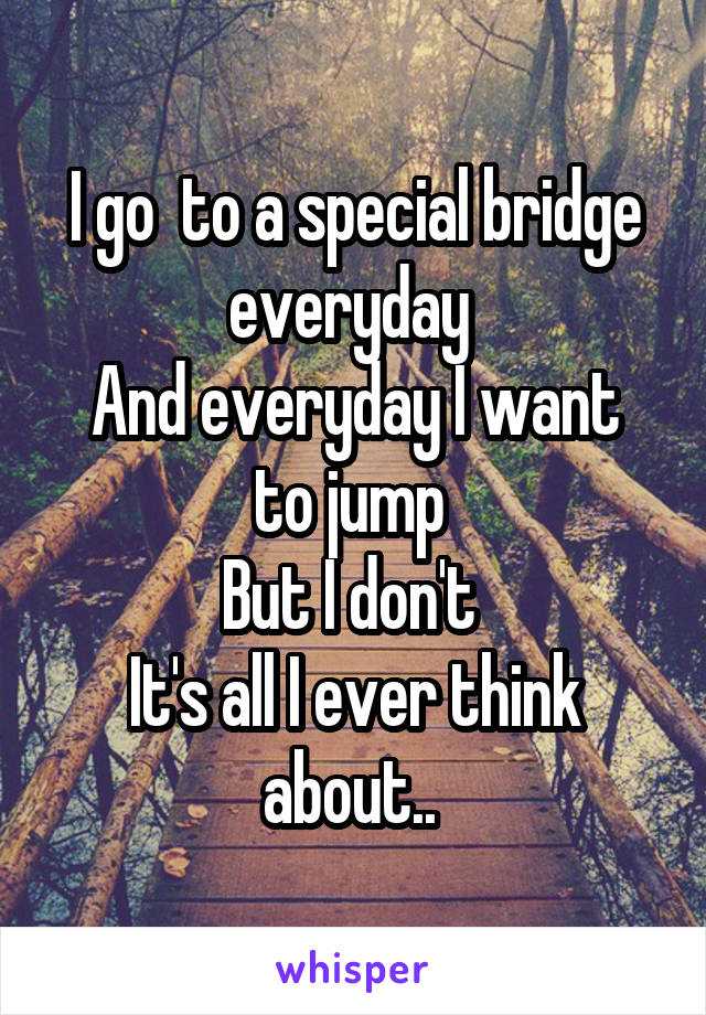 I go  to a special bridge everyday  And everyday I want to jump  But I don't  It's all I ever think about..