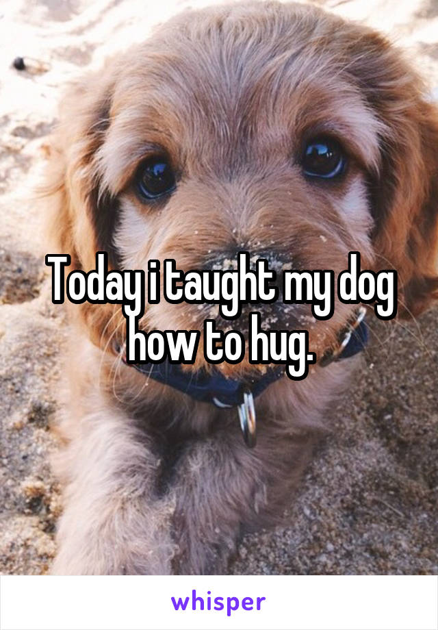 Today i taught my dog how to hug.