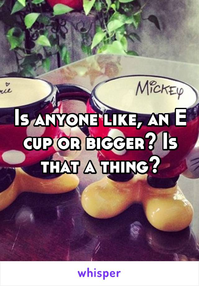 Is anyone like, an E cup or bigger? Is that a thing?