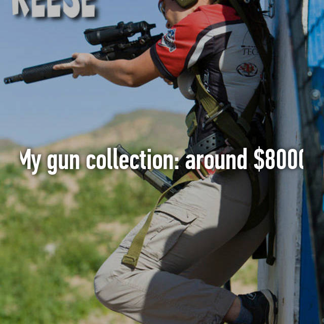 My gun collection: around $8000