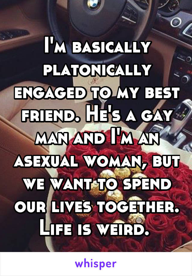 I'm basically platonically engaged to my best friend. He's a gay man and I'm an asexual woman, but we want to spend our lives together. Life is weird.