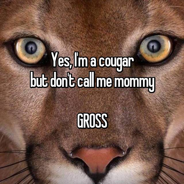 Yes, I'm a cougar but don't call me mommy  GROSS
