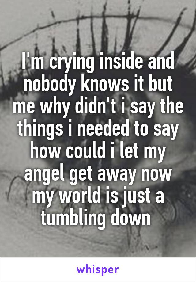 I'm crying inside and nobody knows it but me why didn't i say the things i needed to say how could i let my angel get away now my world is just a tumbling down