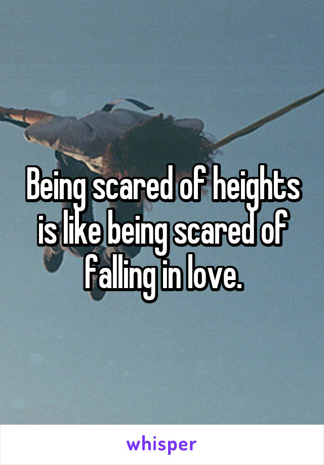Being scared of heights is like being scared of falling in love.